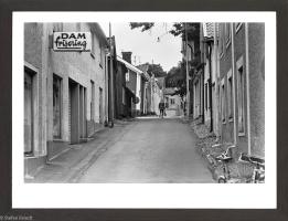 24. Frissan, 1973