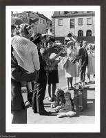 37. Två nallar, 1971